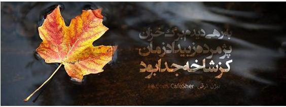 Photo of به رهی دیدم برگ خزان